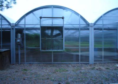 Heids Greenhouses After (Rimol)
